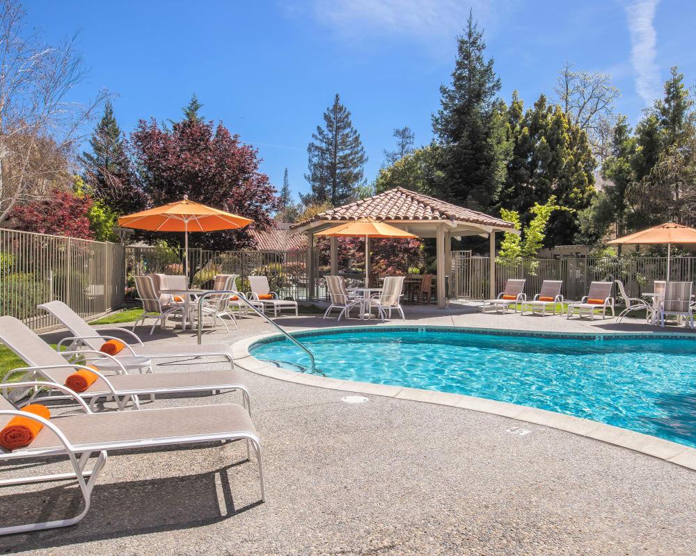View our amenities at Spring Creek Apartments in Santa Clara, California