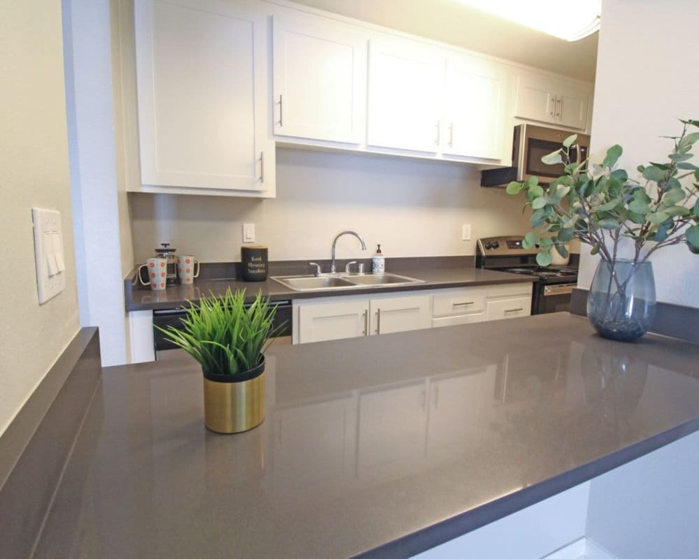Stainless-steel appliances in model home at The Davenport in Sacramento, California