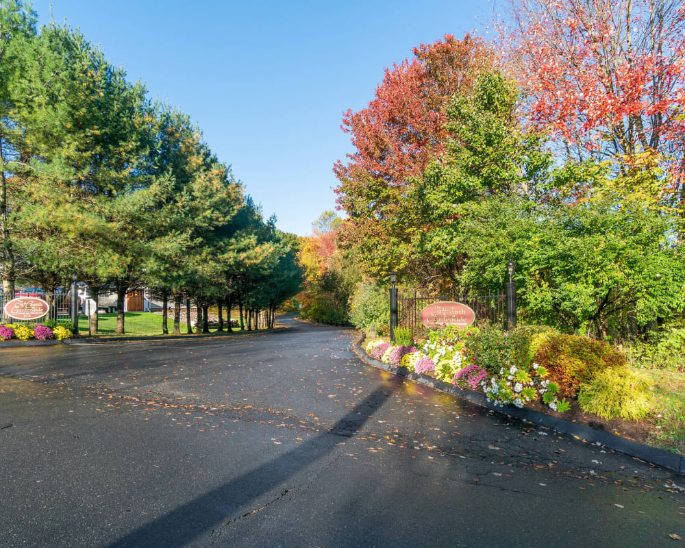 Driveway into The Hearth at Gardenside lined with beautiful and bright trees in Branford, Connecticut