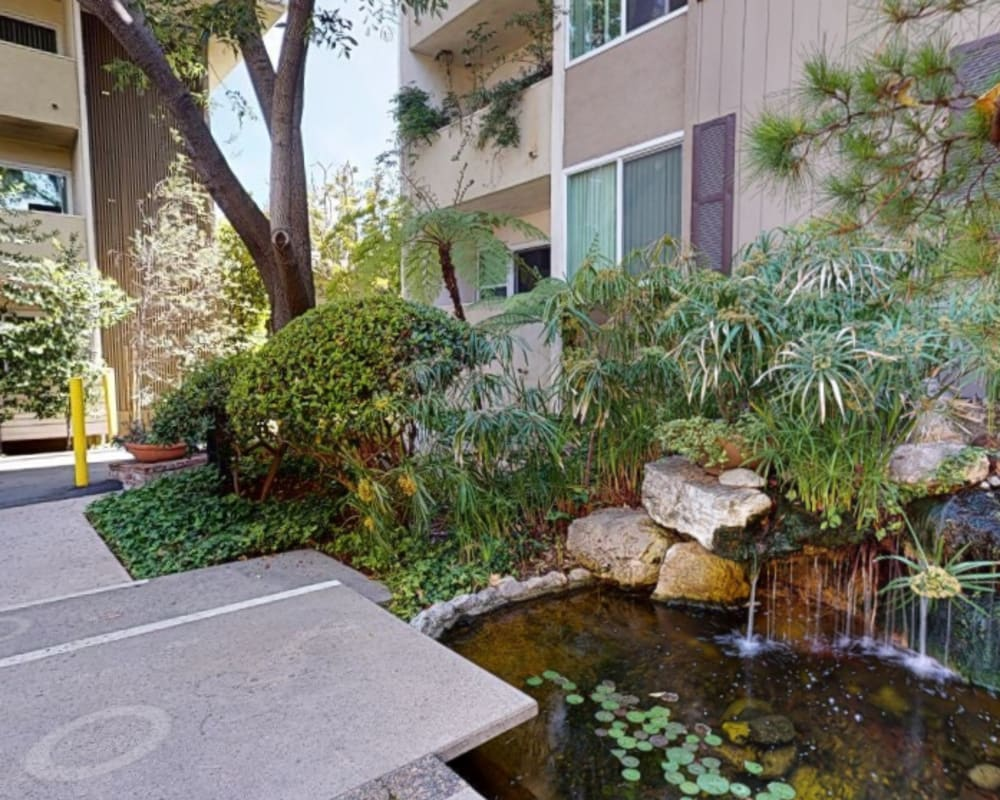 View a virtual tour of the lush landscaping and koi pond at Sunset Barrington Gardens in Los Angeles, California