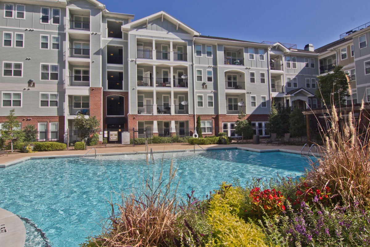 Resort-style swimming pool surrounded by beautiful flora at Atlas Lavista Hills in Atlanta, Georgia