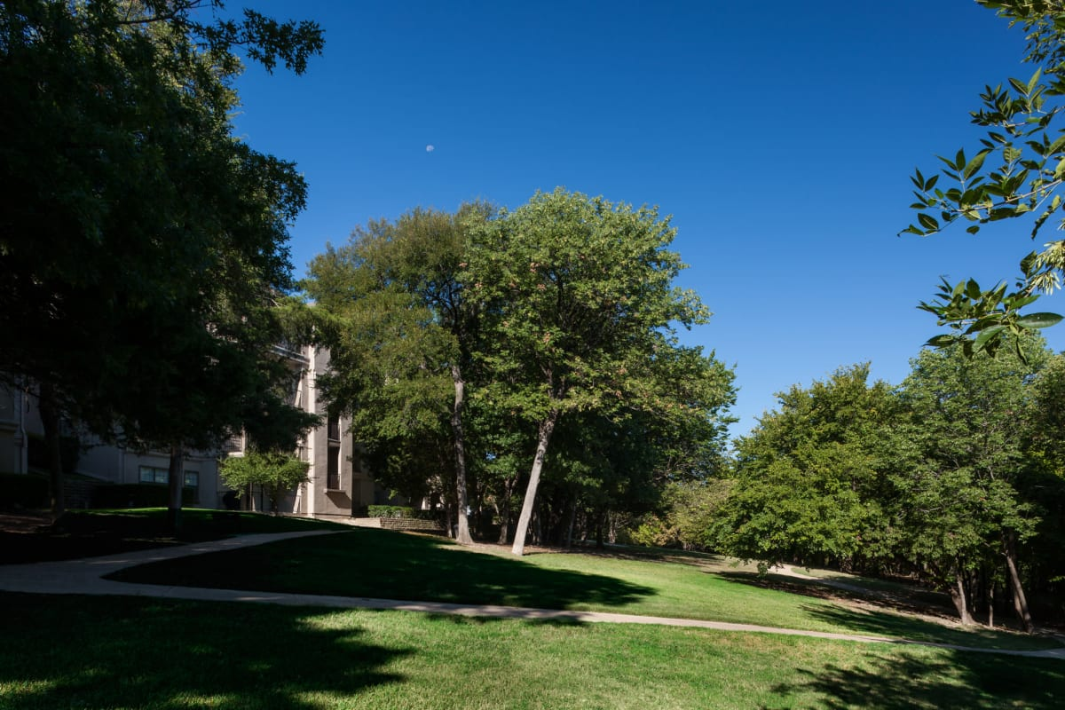 Professionally maintained landscaping and mature trees throughout the community at Hyde Park at Montfort in Dallas, Texas
