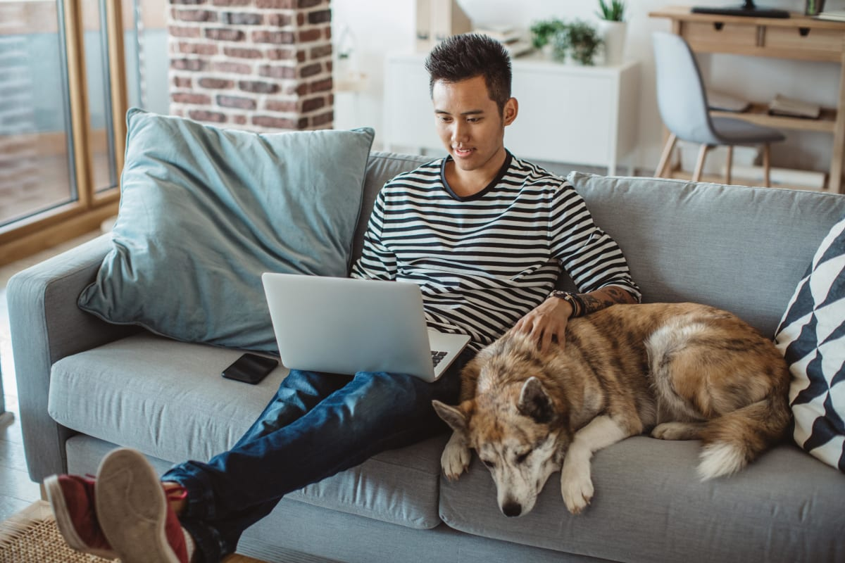 Resident surfing the web with his dog from the couch in his luxury home at The Coast of Naples Florida in Naples, Florida