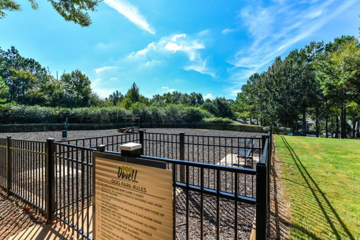 Dog park at 900 Dwell in Stockbridge, Georgia