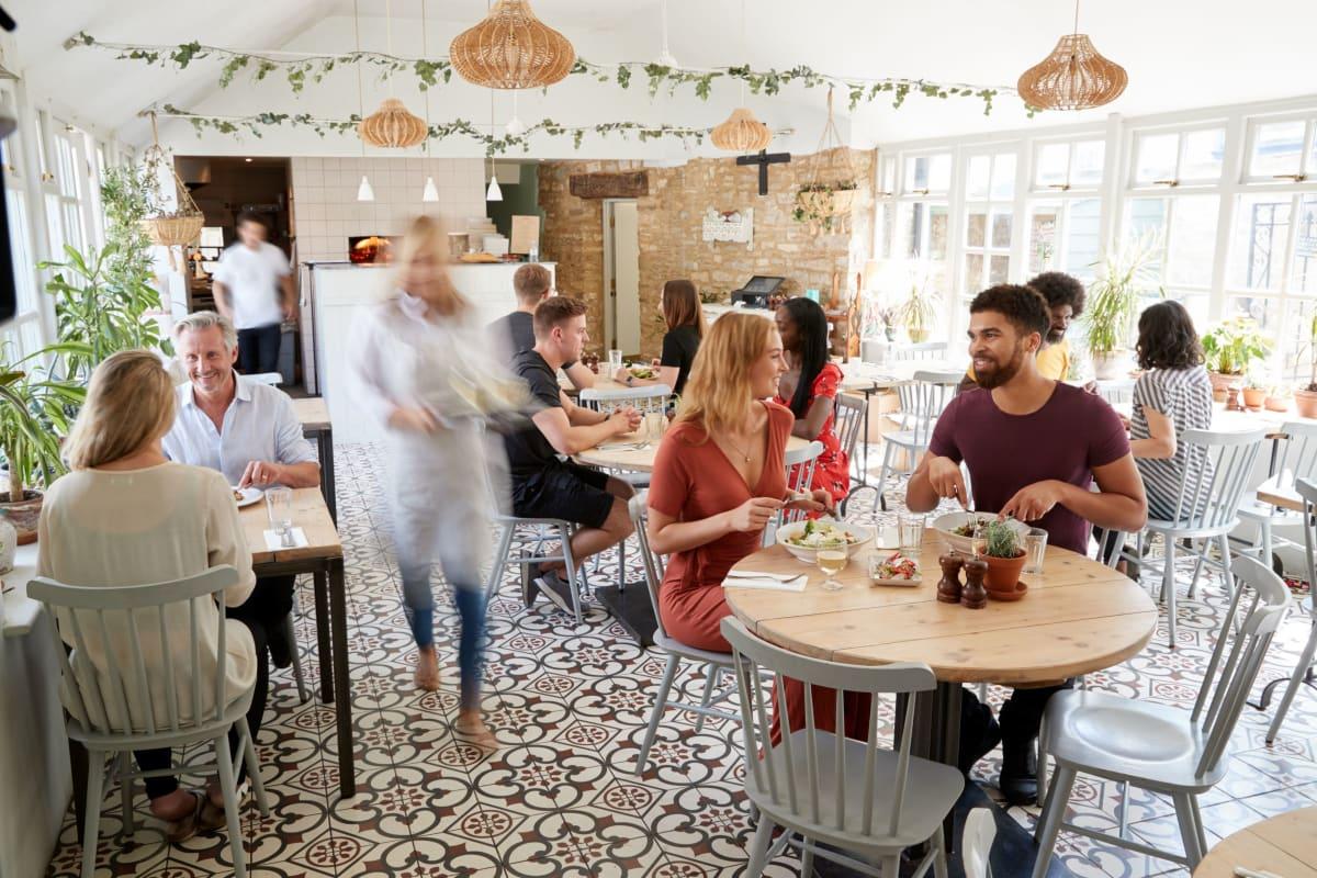 Coffee shop near Westwood @60 in Brandon, Florida