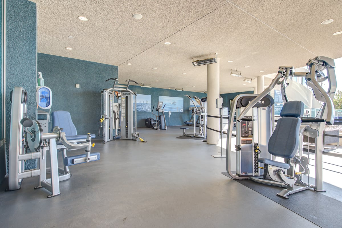 Outdoor gym and fitness center at Esprit Marina del Rey in Marina del Rey, California
