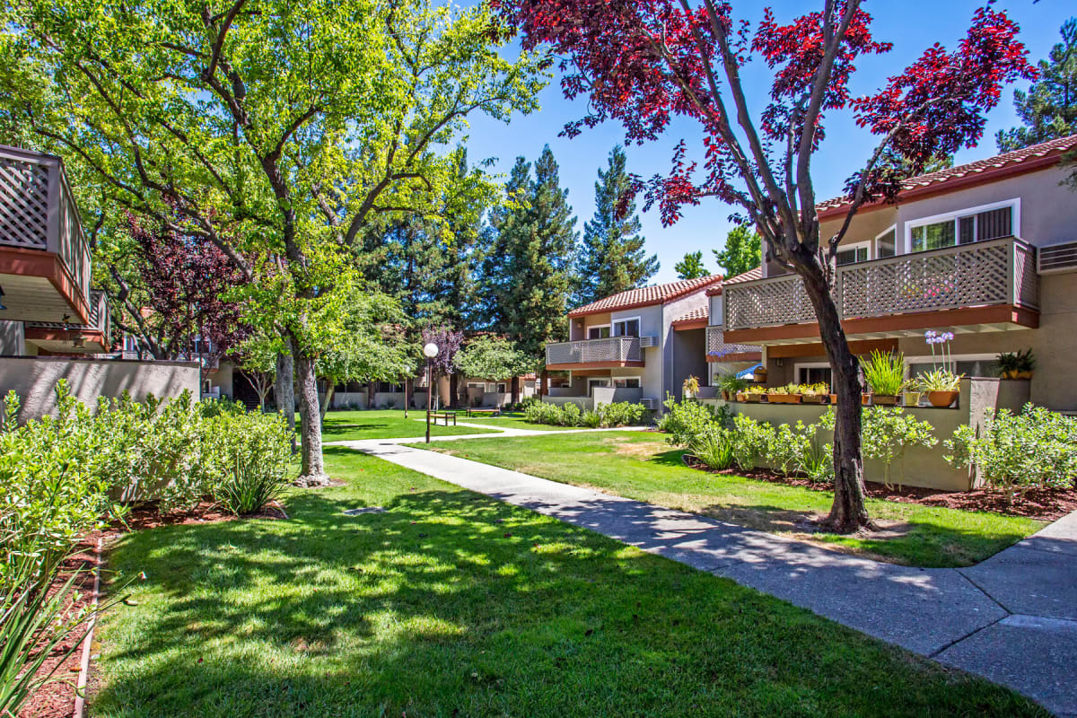 Lush landscaping and mature trees throughout the community at Valley Plaza Villages in Pleasanton, California