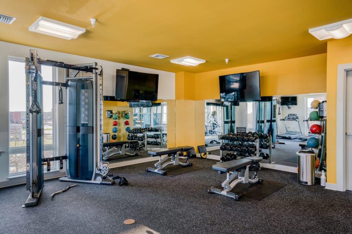 Free Weights in Fitness Center at Indigo 19 in Virginia Beach, Virginia