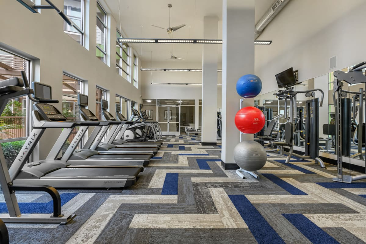 Cardio machines lined up in front of windows and medicine balls on rack at Sabina in Austin, Texas