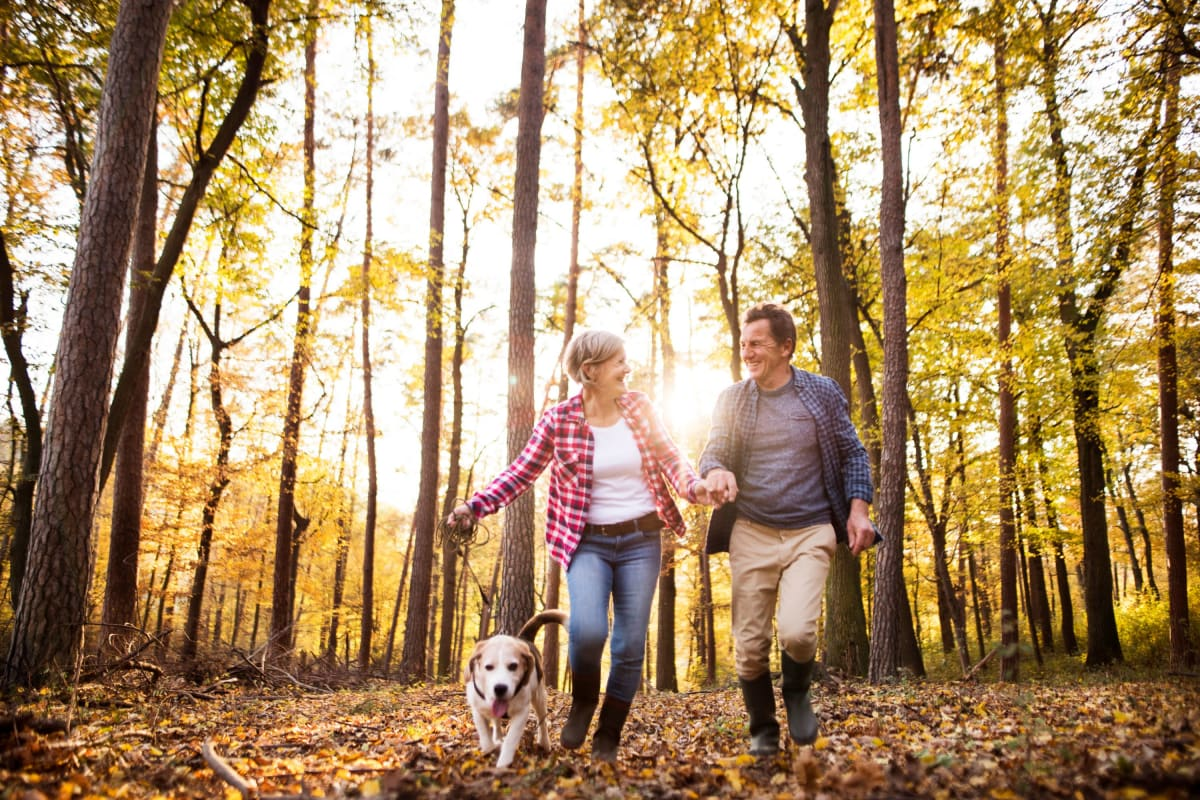 Couple and their dog taking a walk through the trees near The Pointe at Siena Ridge in Davenport, Florida