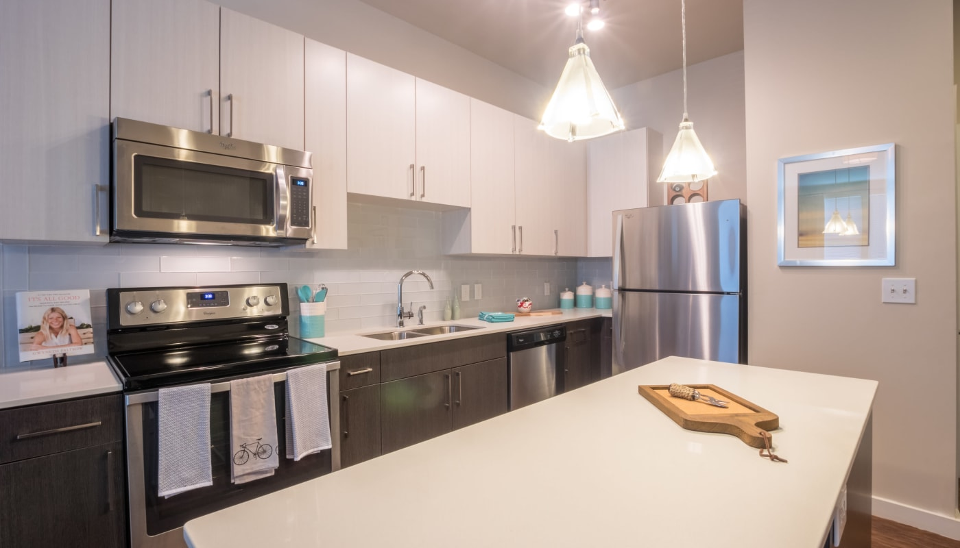 Apartments with Sleek Stainless-Steel Appliances at Inman Quarter