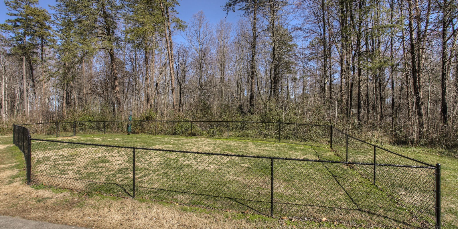 Onsite dog park with grass at Enclave at North Point Apartment Homes in Winston Salem, North Carolina