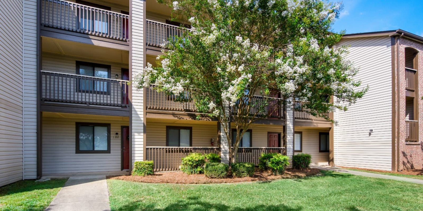 Large, beautiful deciduous trees surround Gable Oaks Apartment Homes in Rock Hill, South Carolina