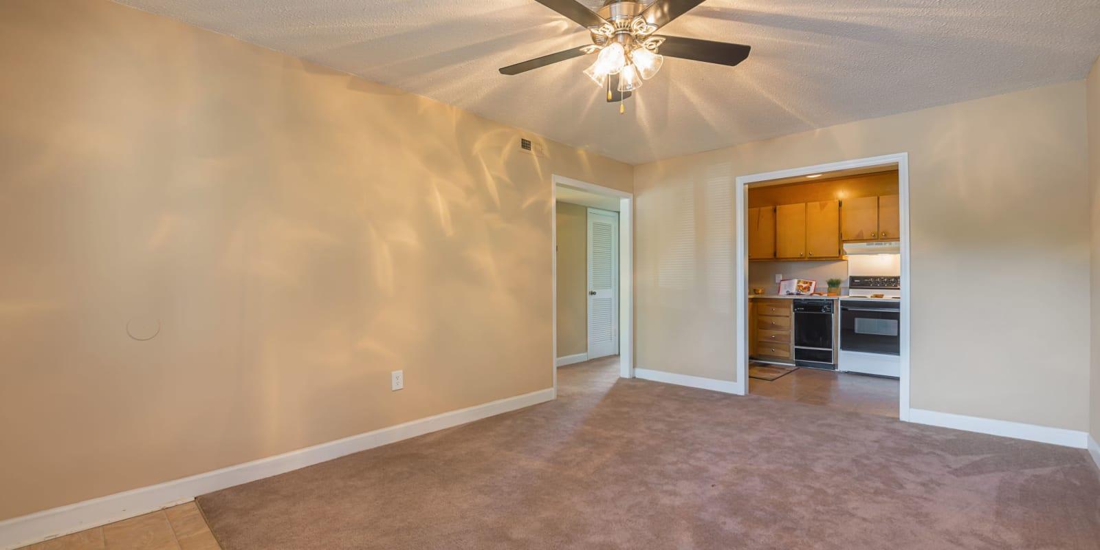 Living room with plush carpeting at Lakewood Apartment Homes in Salisbury, North Carolina