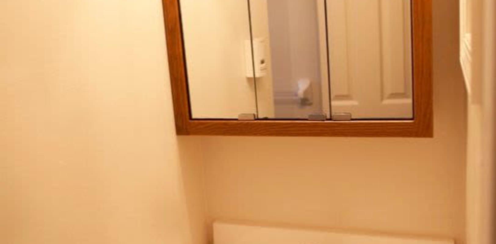 Bathroom mirror at Oley Meadows in Oley, Pennsylvania