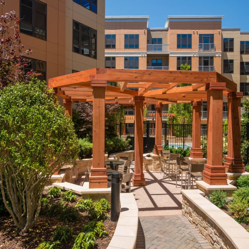 Lush Courtyard with Walking Path and Pergola at  in Silver Spring, MD