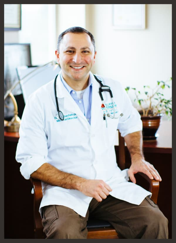 Dr. Art Khachatryan Medical Director, Veterinarian in Sumner Animal Hospital