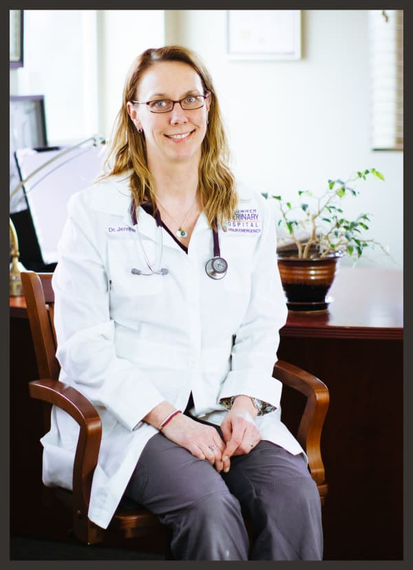 Dr. Jennifer Bronk, Veterinarian in Sumner Animal Hospital