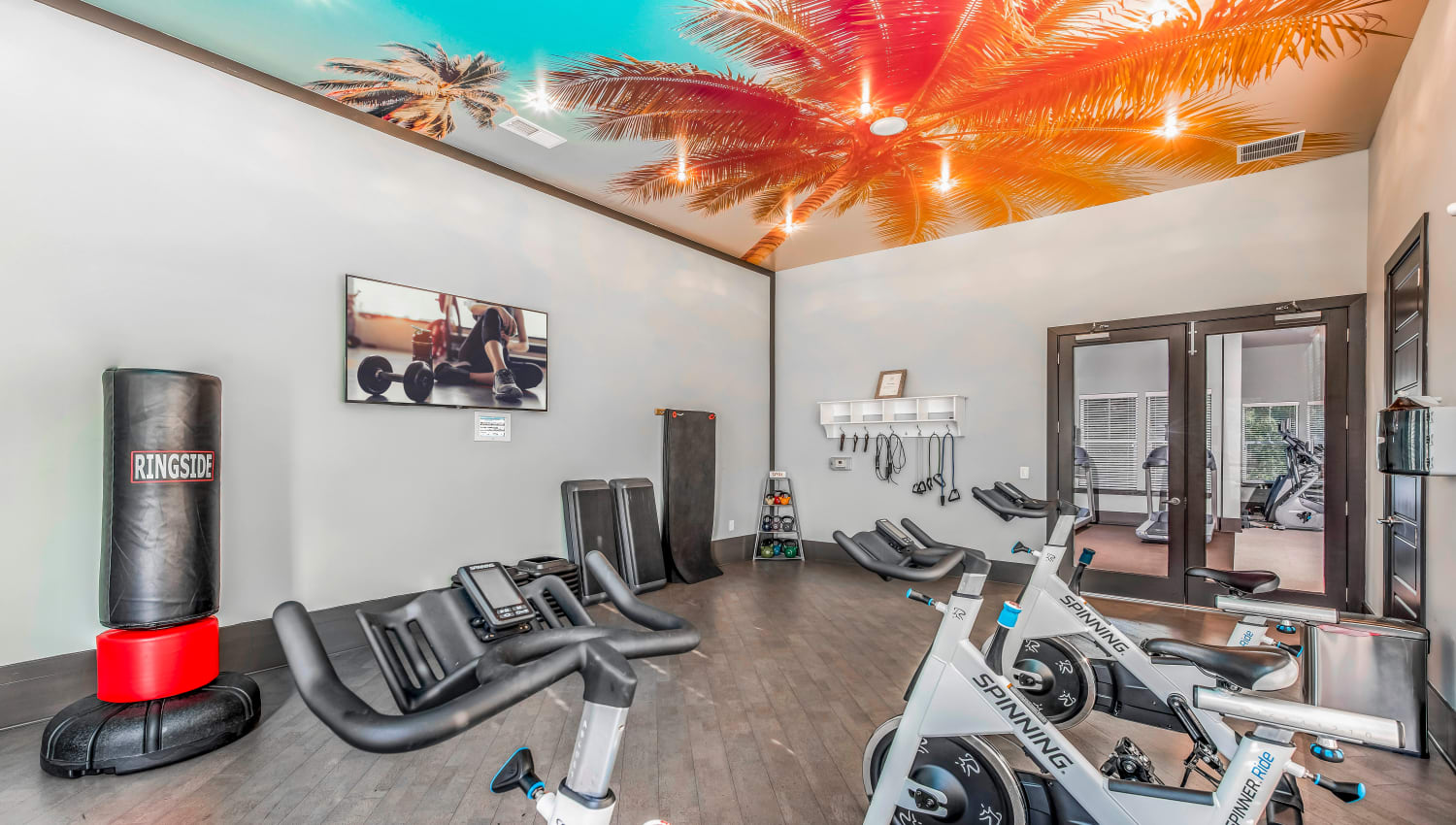 Mural on the ceiling in the fitness center at Canopy at Citrus Park in Tampa, Florida
