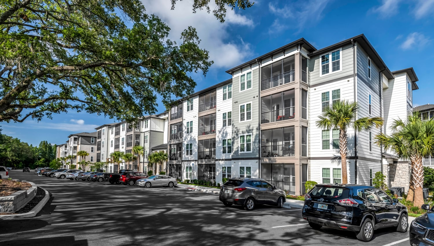 Well-maintained landscaping around the community at Canopy at Citrus Park in Tampa, Florida