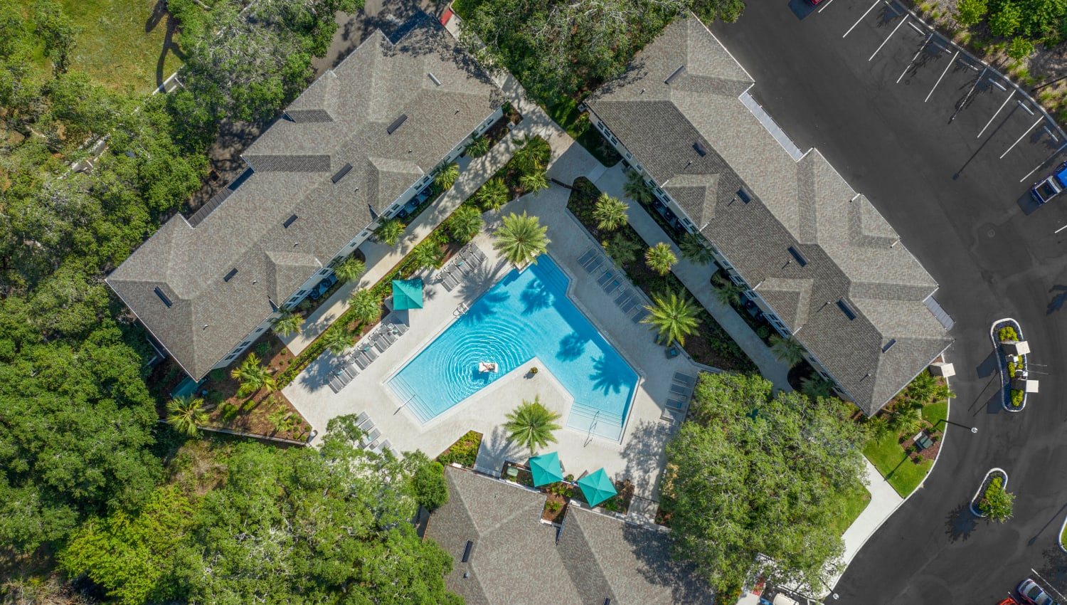 Aerial view of our pool and clubhouse buildings at Canopy at Citrus Park in Tampa, Florida
