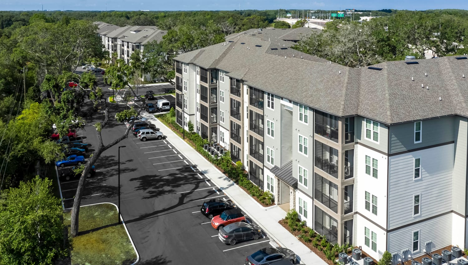 Aerial view of resident buildings with plenty of parking out front at Canopy at Citrus Park in Tampa, Florida