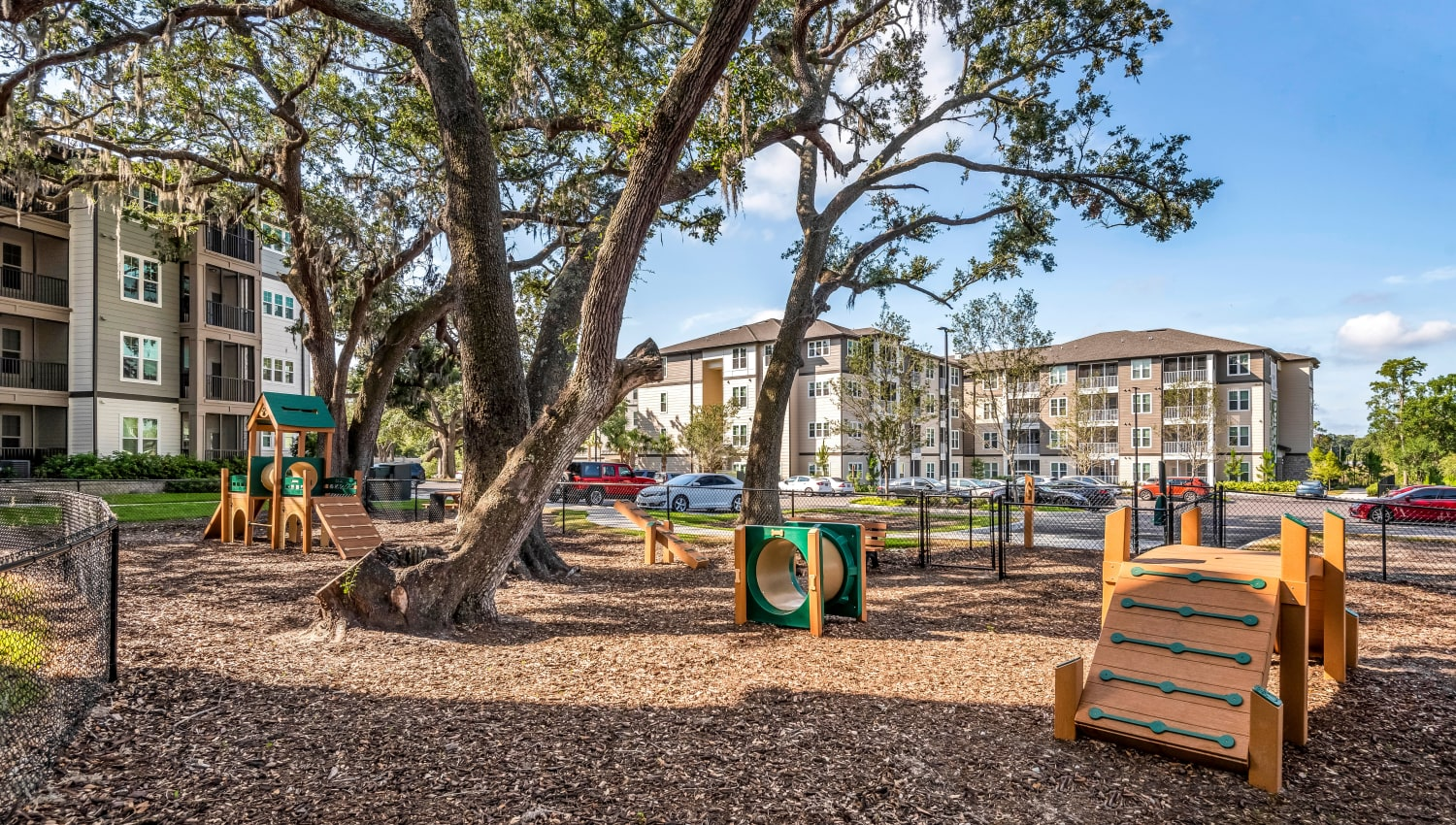 Onsite dog park with agility course at Canopy at Citrus Park in Tampa, Florida