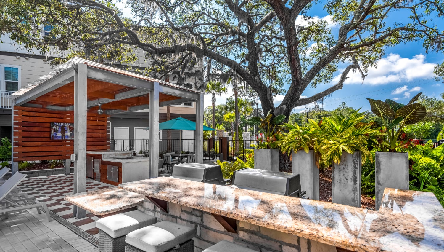 Barbecue area with gas grills at Canopy at Citrus Park in Tampa, Florida