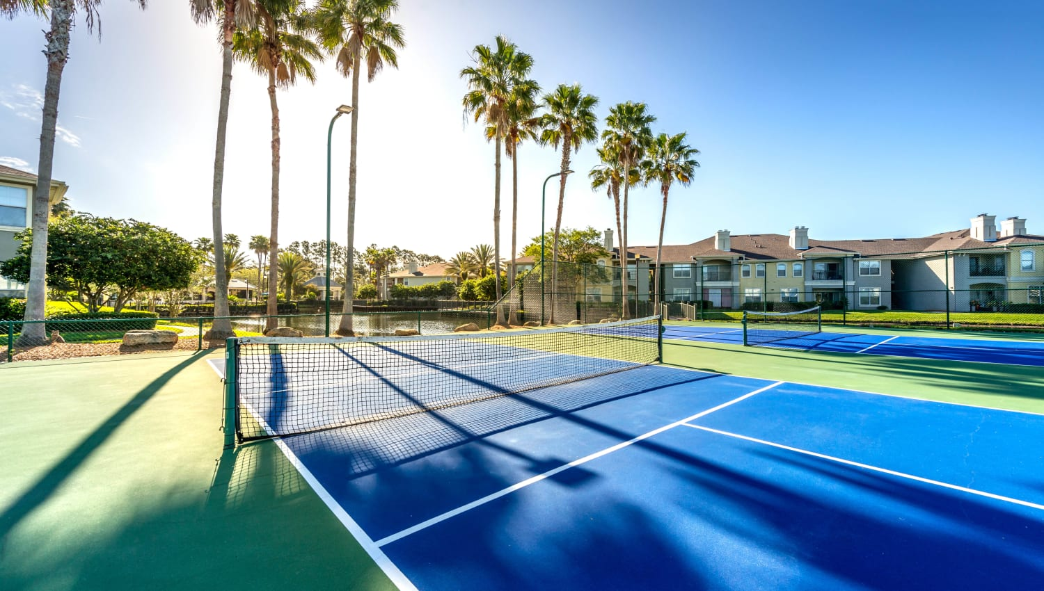 Tennis courts partially shaded by palm trees at Cape House in Jacksonville, Florida
