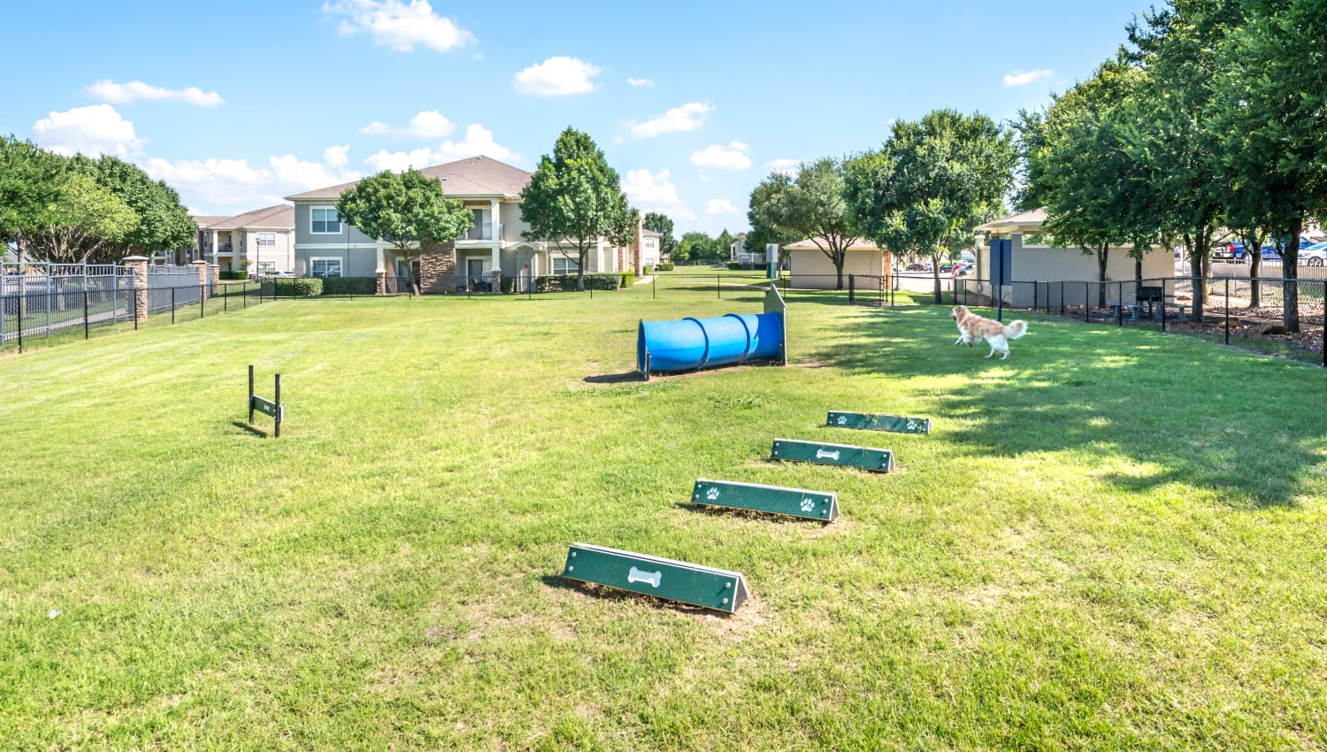 Agility course at the onsite bark park at Olympus Stone Glen in Keller, Texas