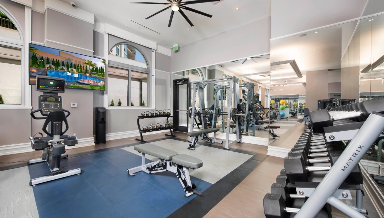 Free weights and more in the fitness center at Olympus Harbour Island in Tampa, Florida