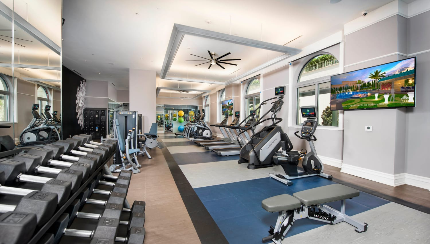 Well-equipped onsite fitness center at Olympus Harbour Island in Tampa, Florida