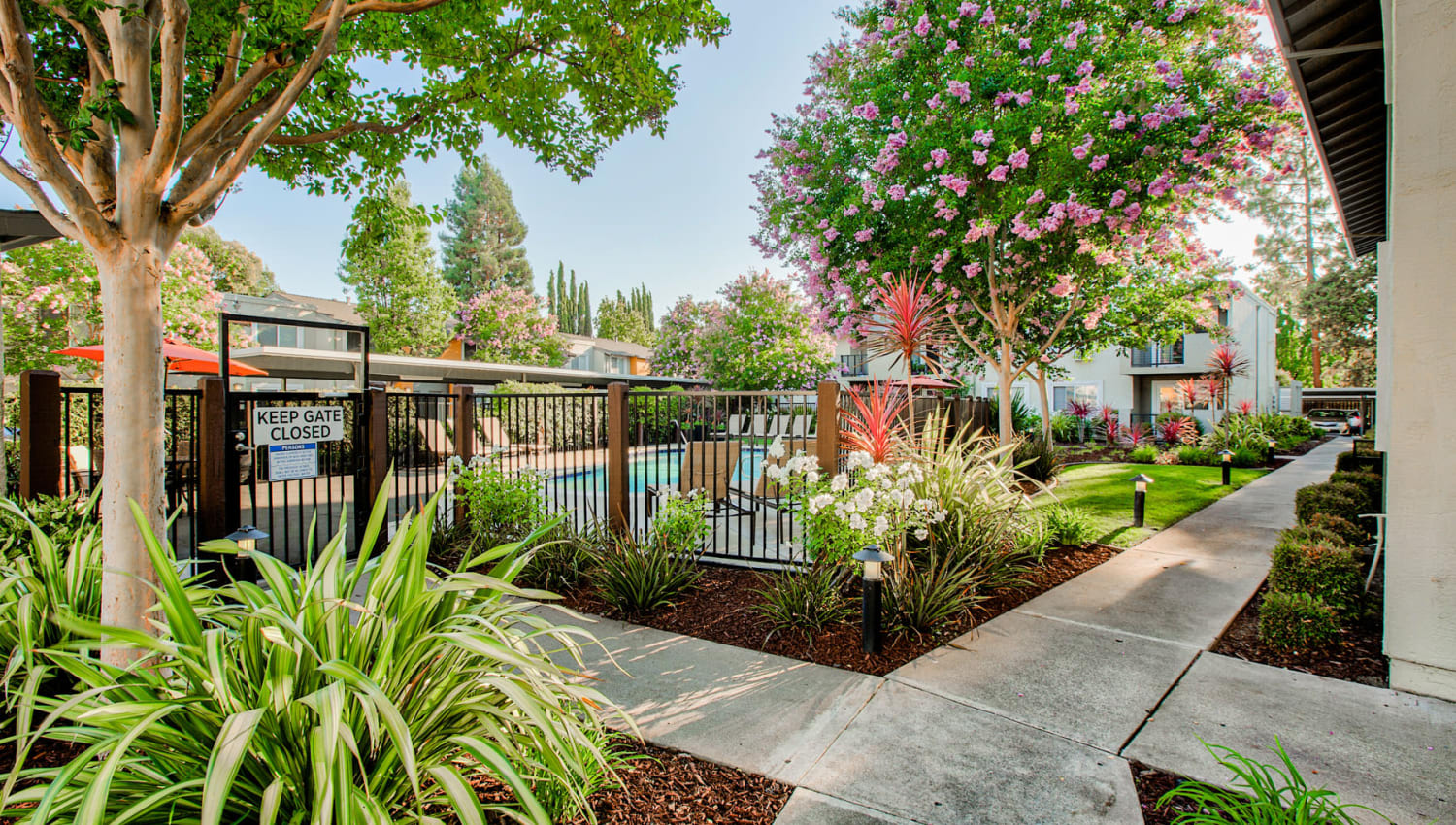 Lush landscaping throughout the community at Pleasanton Place Apartment Homes in Pleasanton, California
