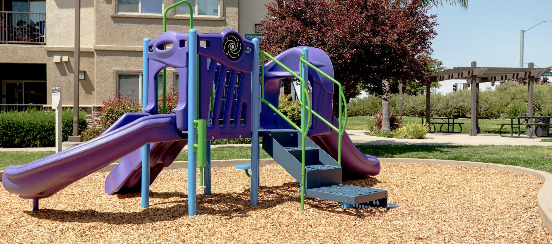 Playground at Wolf Ranch Condominium Rentals