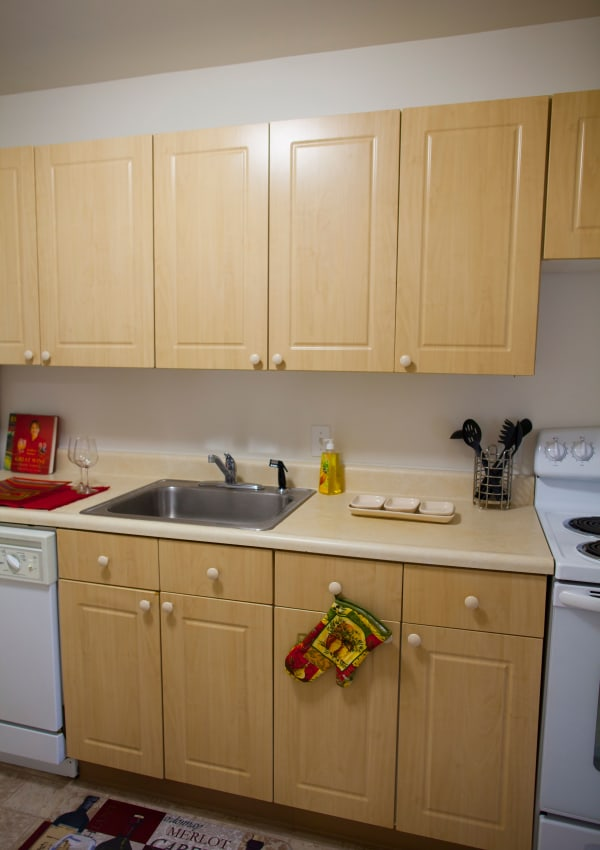 Kitchen at Elmwood Court Apartments in Rochester
