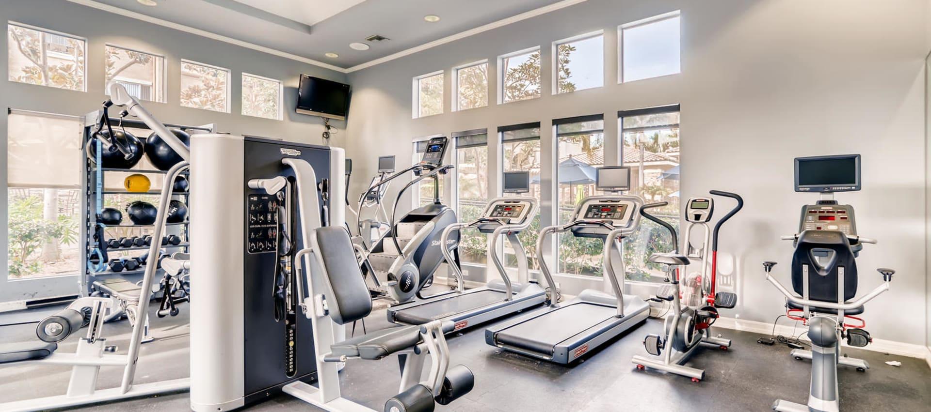 Fitness Center at Alize at Aliso Viejo Apartment Homes in Aliso Viejo, California