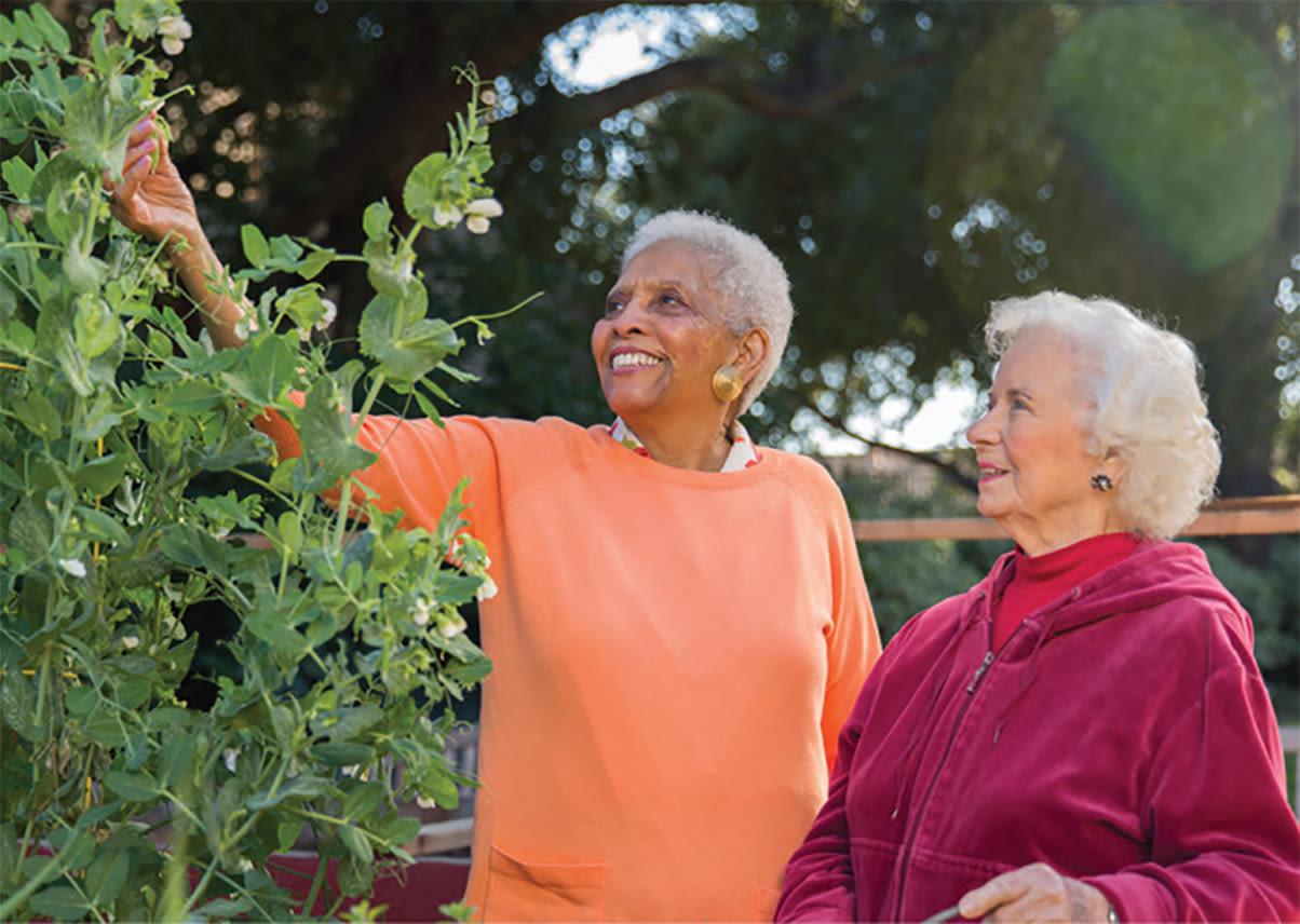 Enjoy the Los Altos senior living lifestyle at BridgePoint at Los Altos