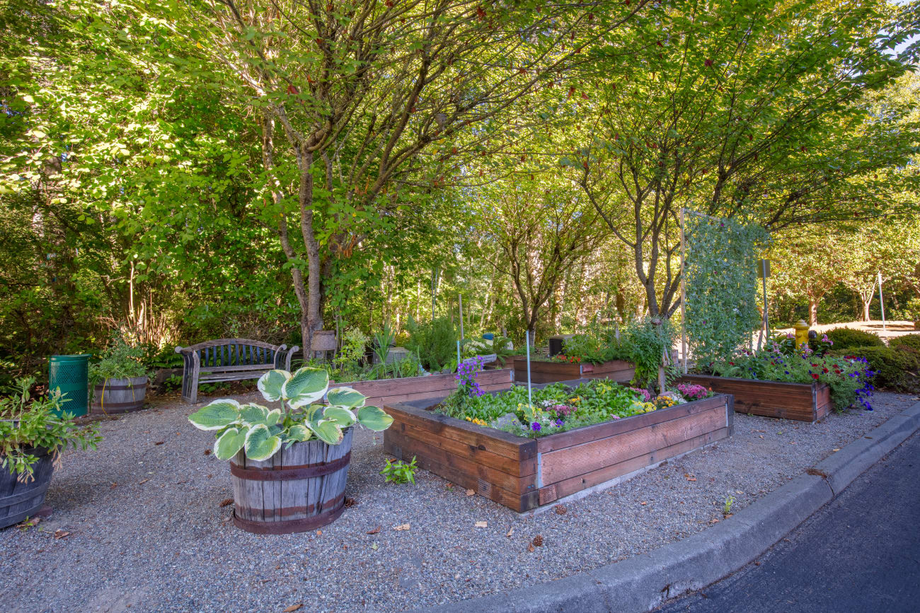 Garden at The Firs in Olympia, Washington