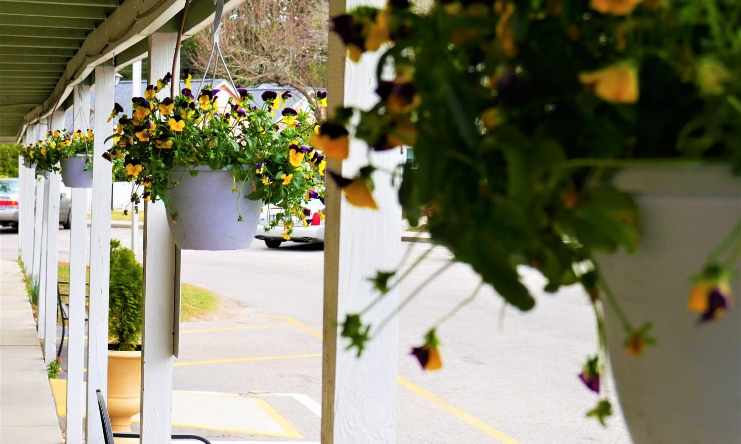 Hanging flower baskets outside at Sandpiper Senior Living in Mt. Pleasant, South Carolina