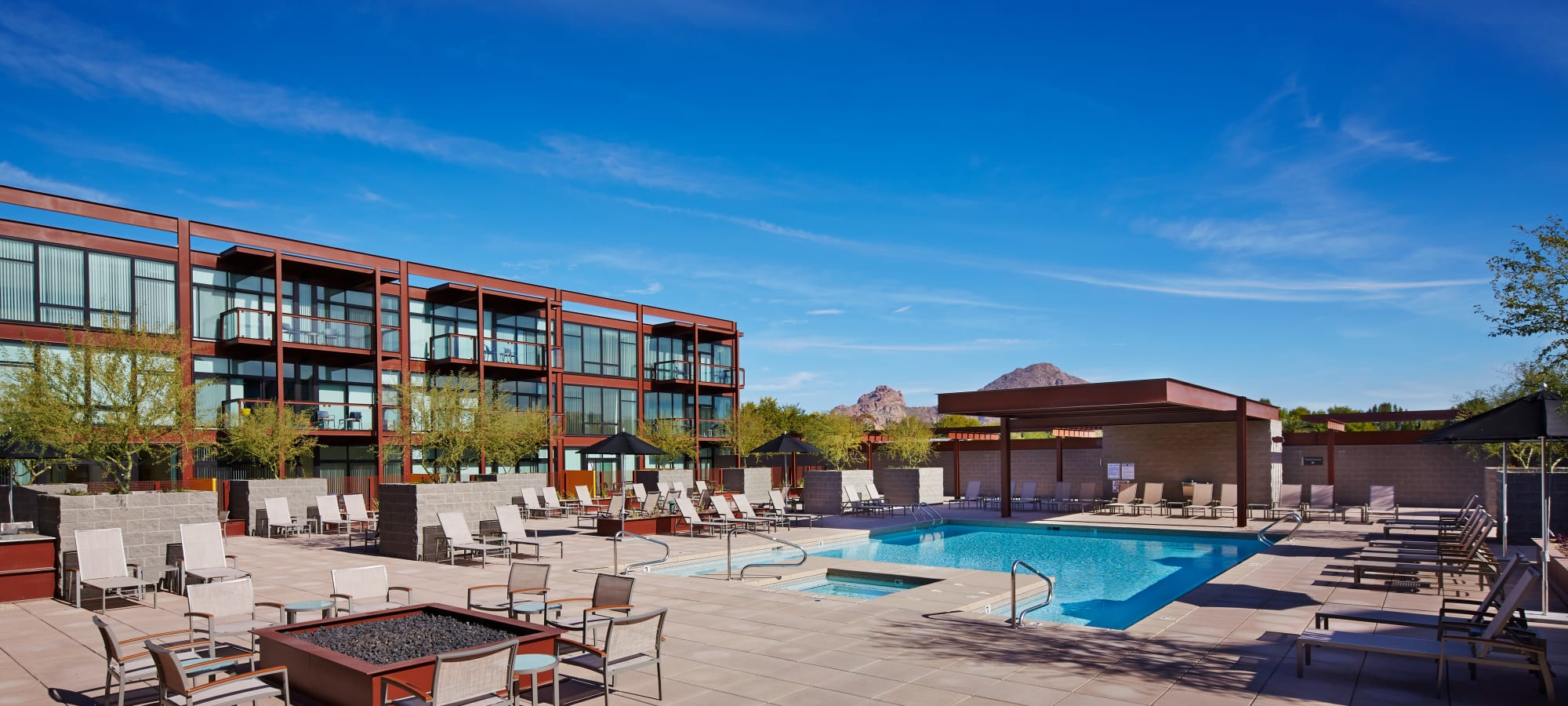 Swimming pool area with chaise lounge chairs at Domus in Phoenix, Arizona