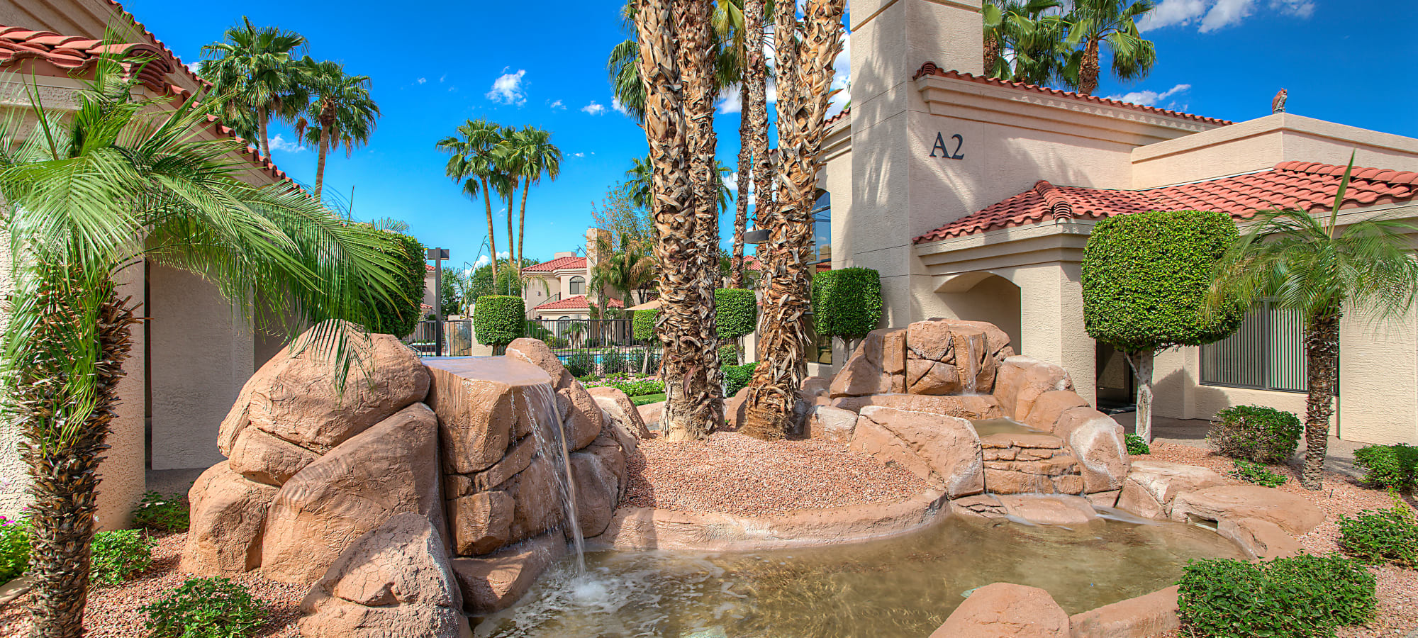 Landscaping and water feature at San Palmilla in Tempe, Arizona