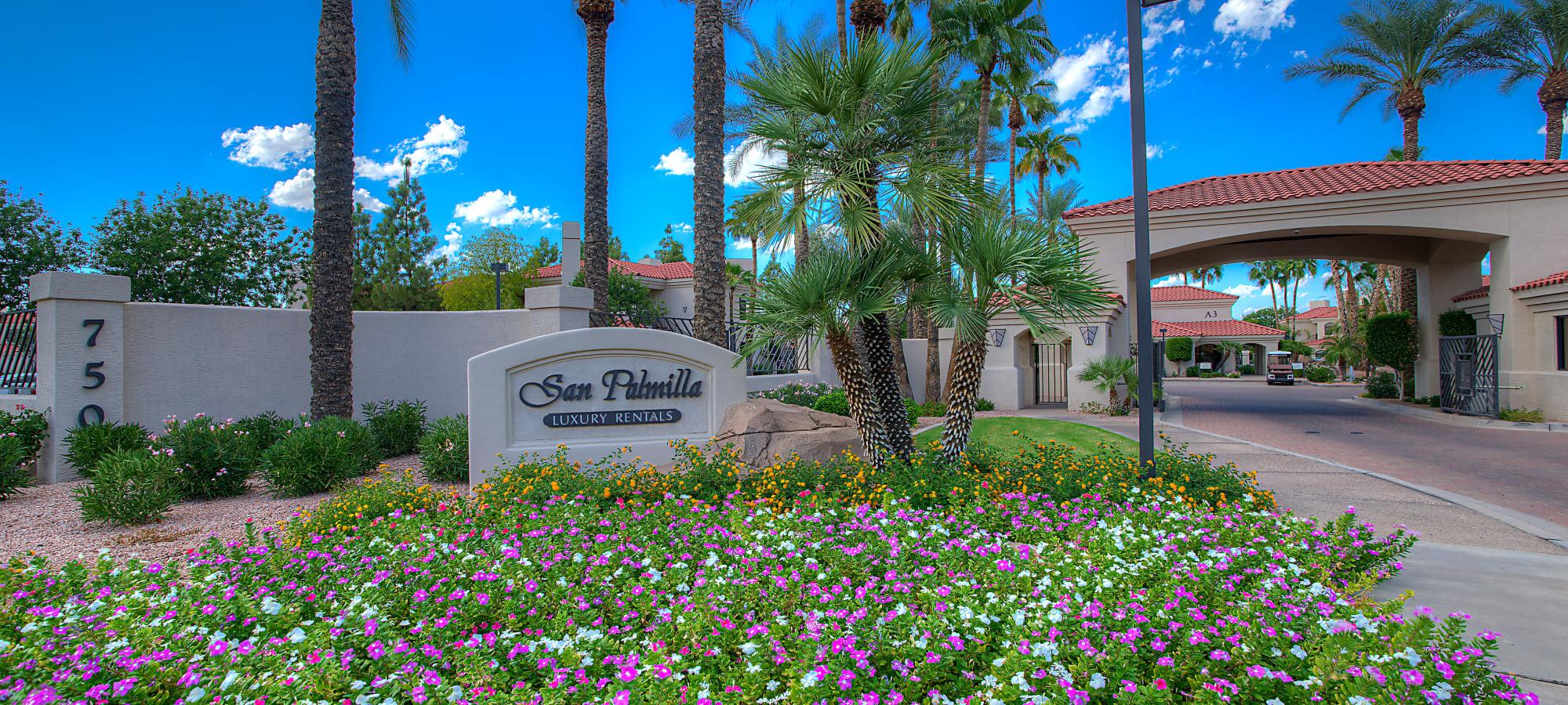 Beautiful flower garden approaching the gated entrance to San Palmilla in Tempe, Arizona