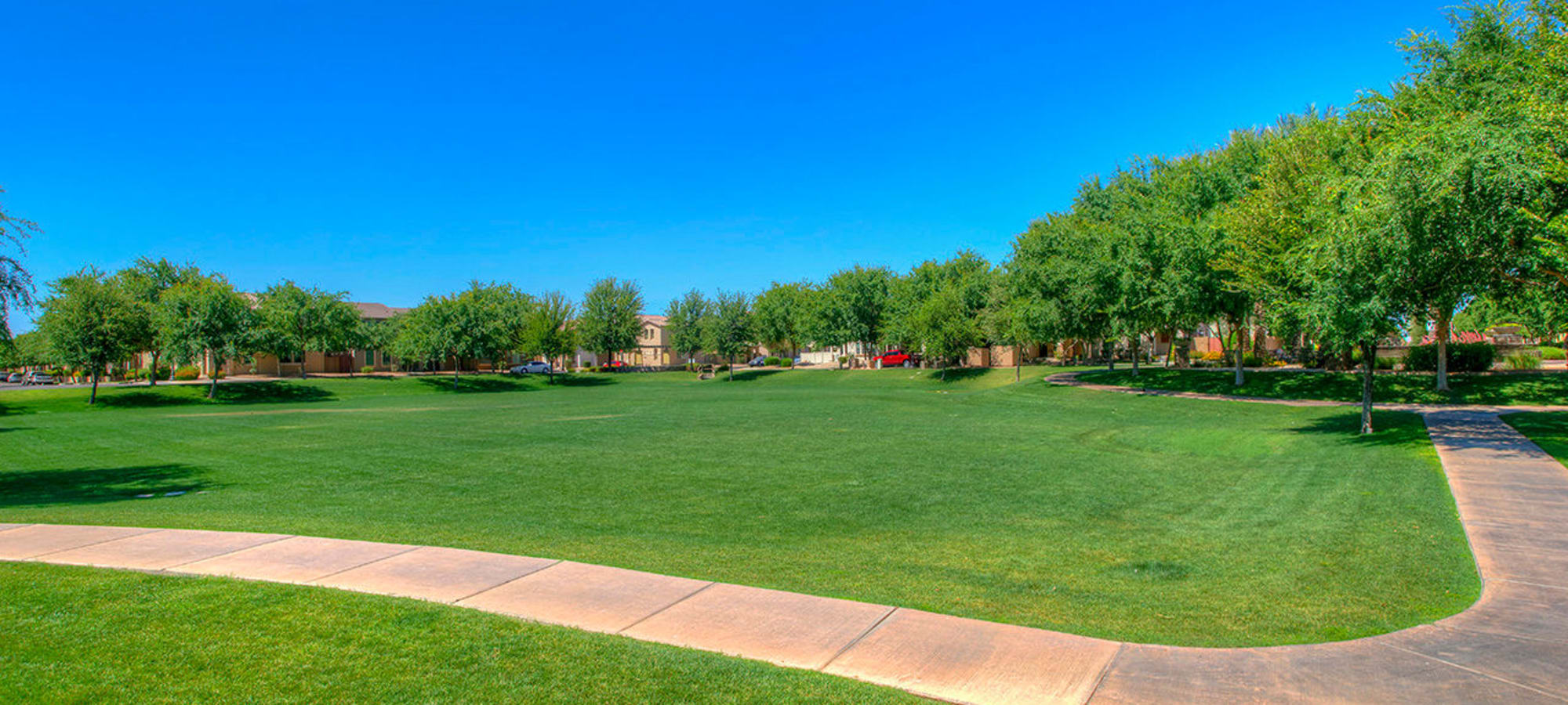 Beautiful grass fields at BB Living at Higley Park in Gilbert, Arizona
