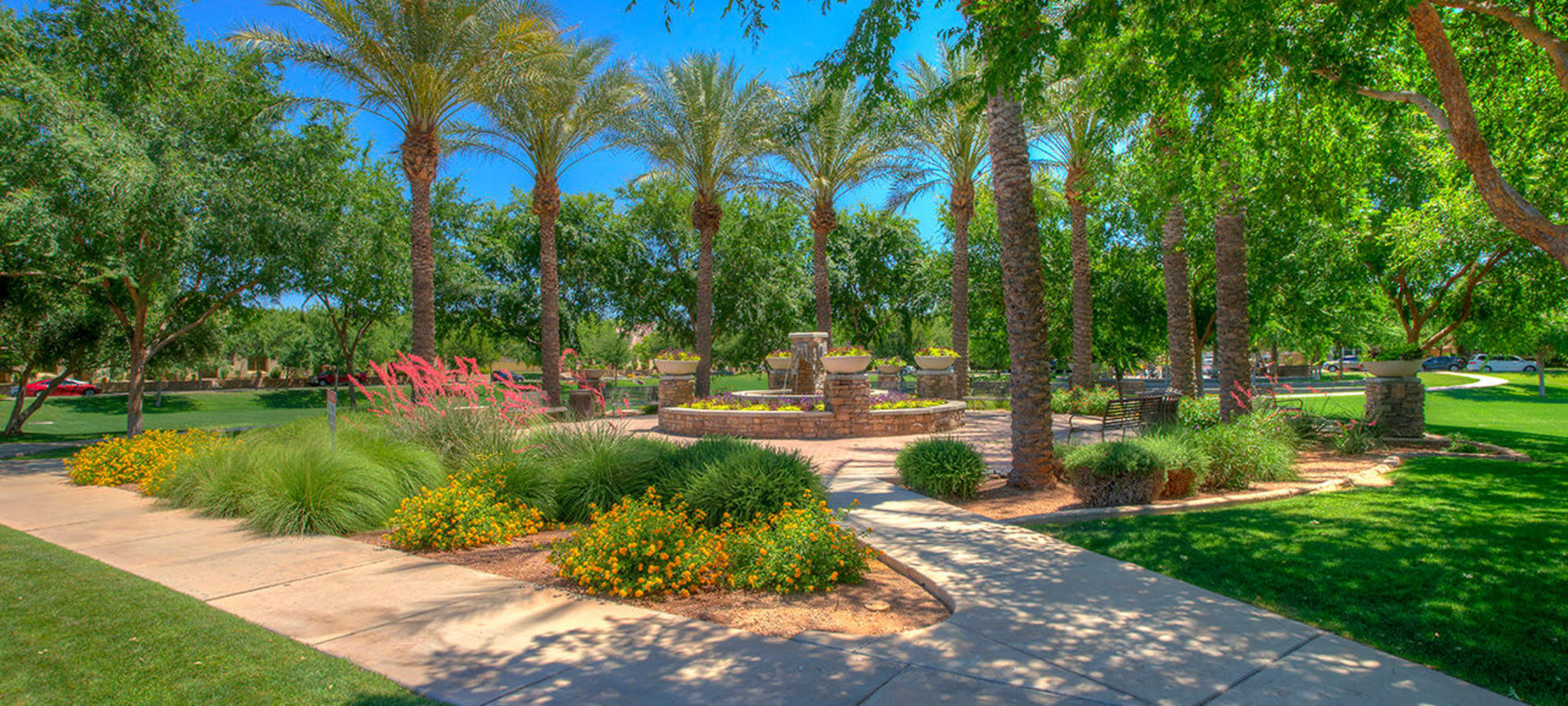 Walkway into park setting at BB Living at Higley Park in Gilbert, Arizona