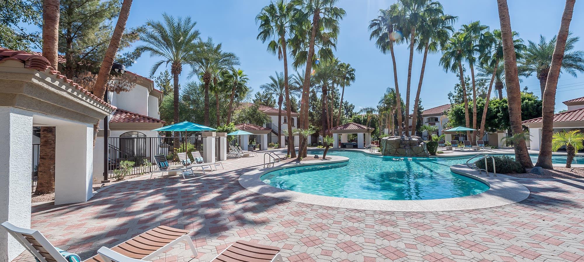 Luxury swimming pool at San Palmas in Chandler, Arizona