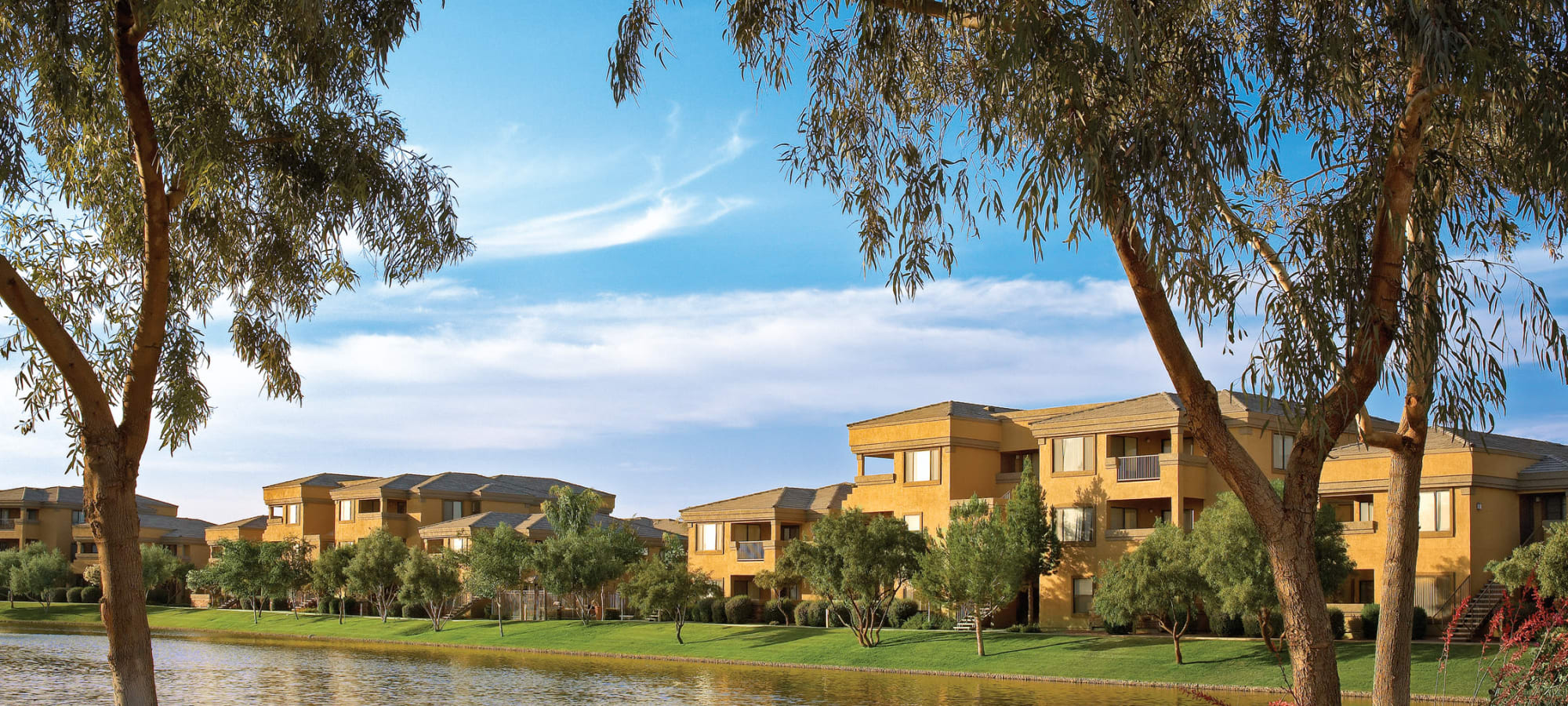 Lakeside view at Waterside at Ocotillo in Chandler, Arizona