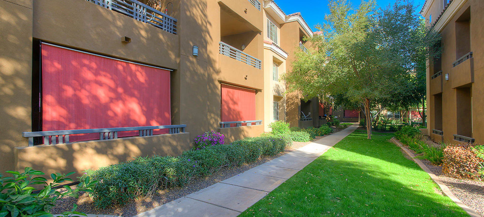 Beautiful walkways with grass lawns at Park on Bell in Phoenix, Arizona