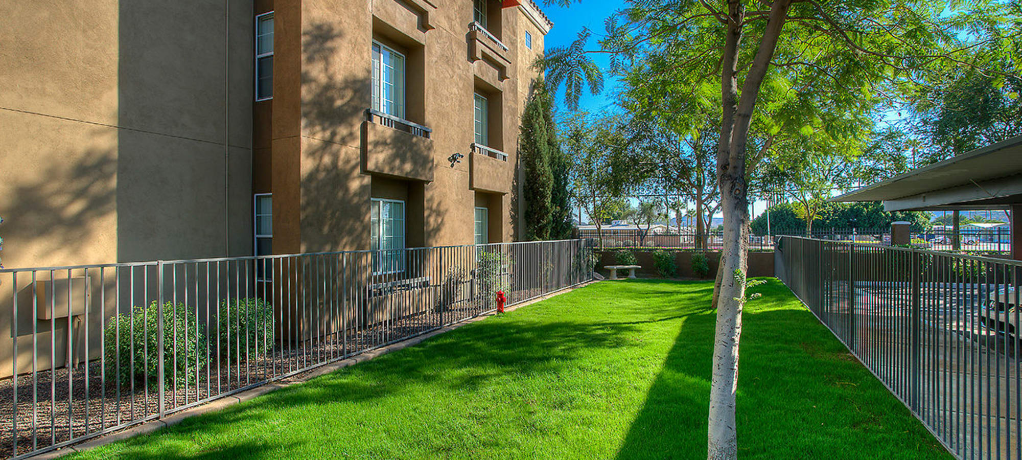 Community dog park at Park on Bell in Phoenix, Arizona
