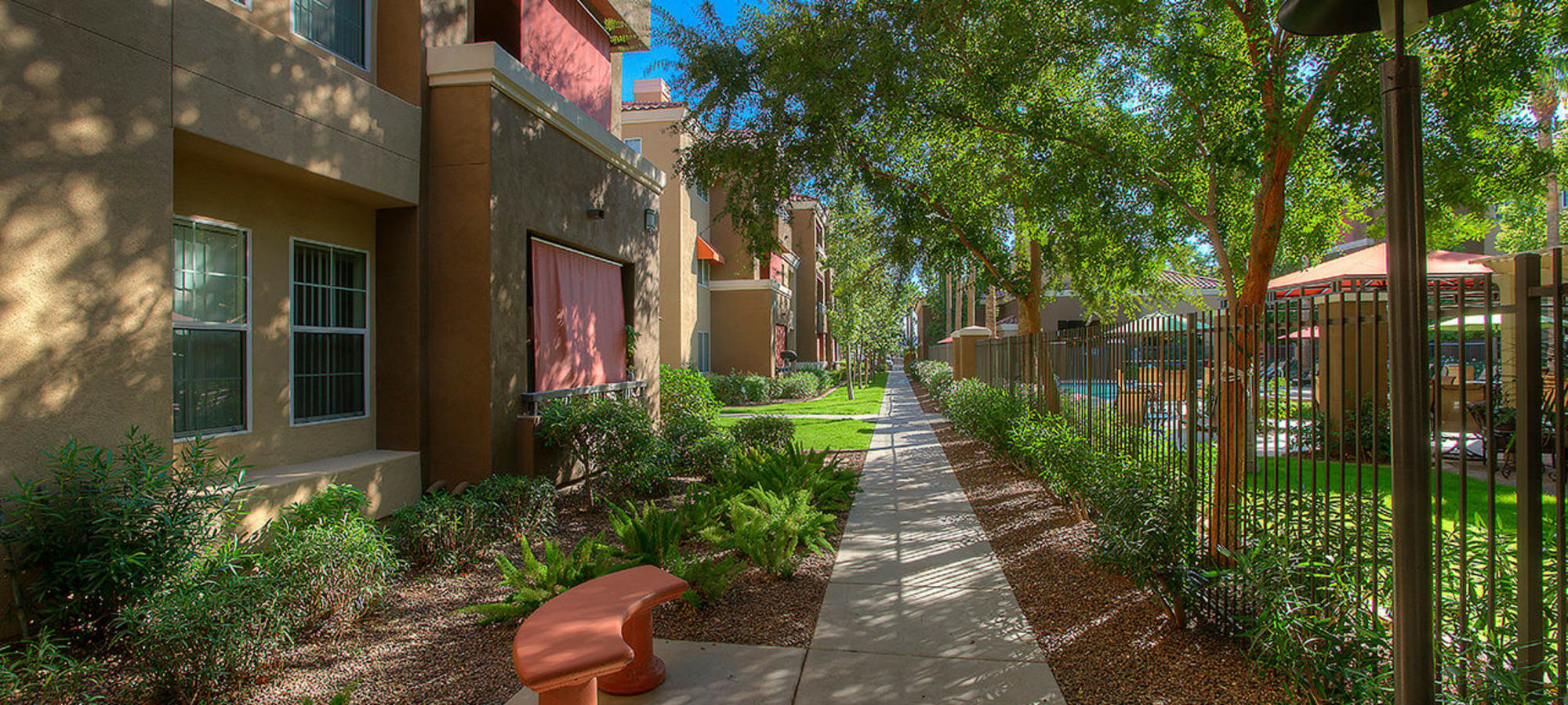 Shaded walkways with large deciduous trees at Park on Bell in Phoenix, Arizona