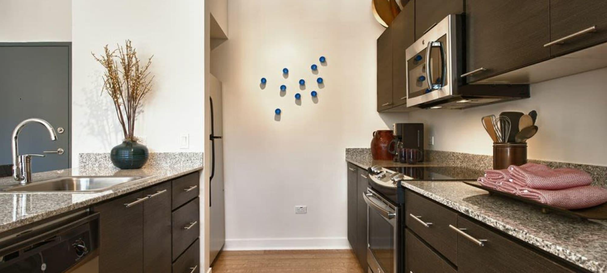 Enjoy a luxury kitchen at Domus